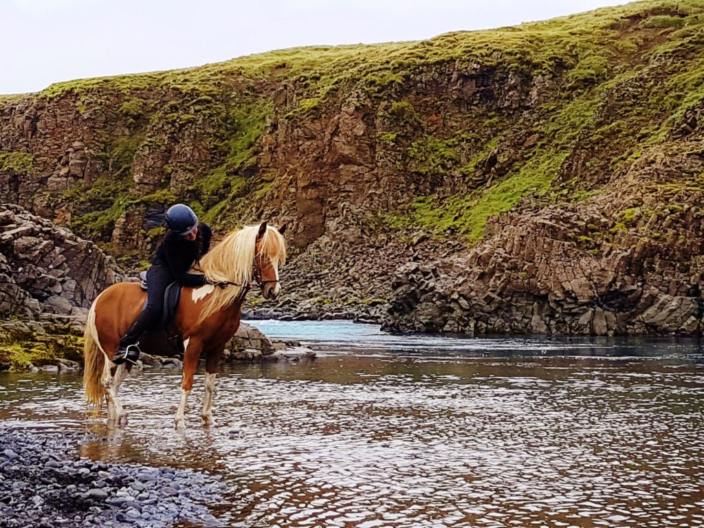 Private Golden Circle & horseback riding Iceland