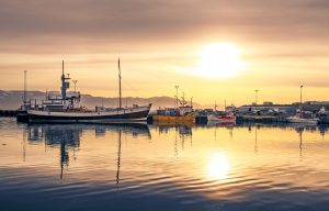 Fishing and Farming in Iceland: Historical and Current Practices