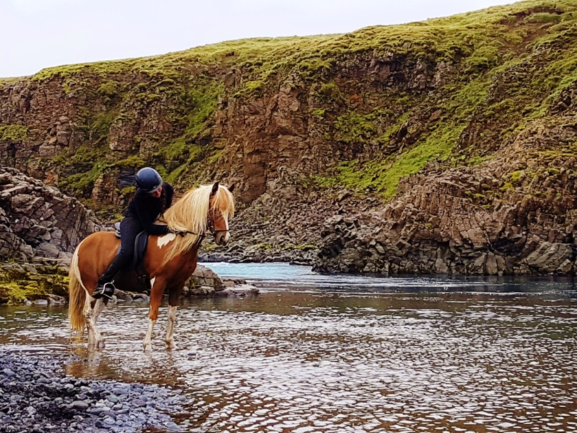 Things to do in Iceland in July - Horseback riding Iceland